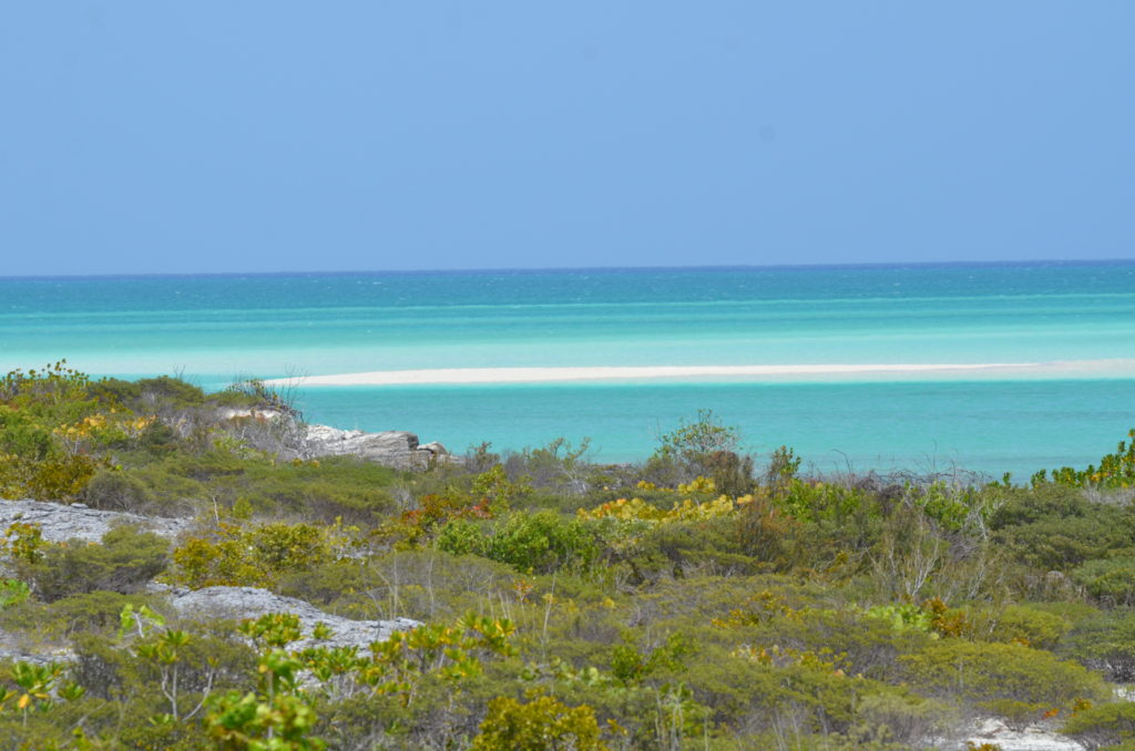 Turks and Caicos blue water